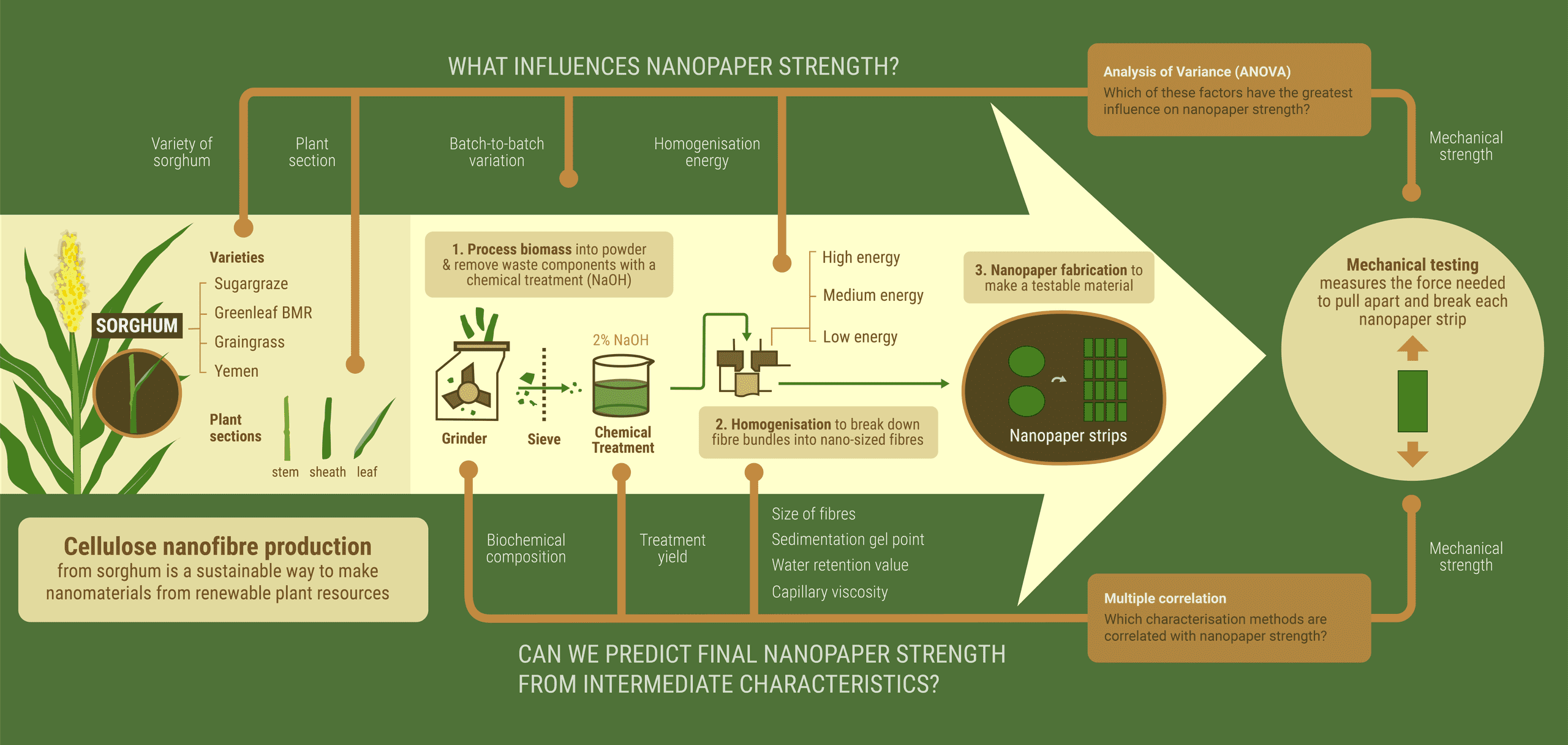Infographic: Cellulose nanofibre production. What influences nanopaper strength? Can we predict nanopaper strength from intermediate characteristics?